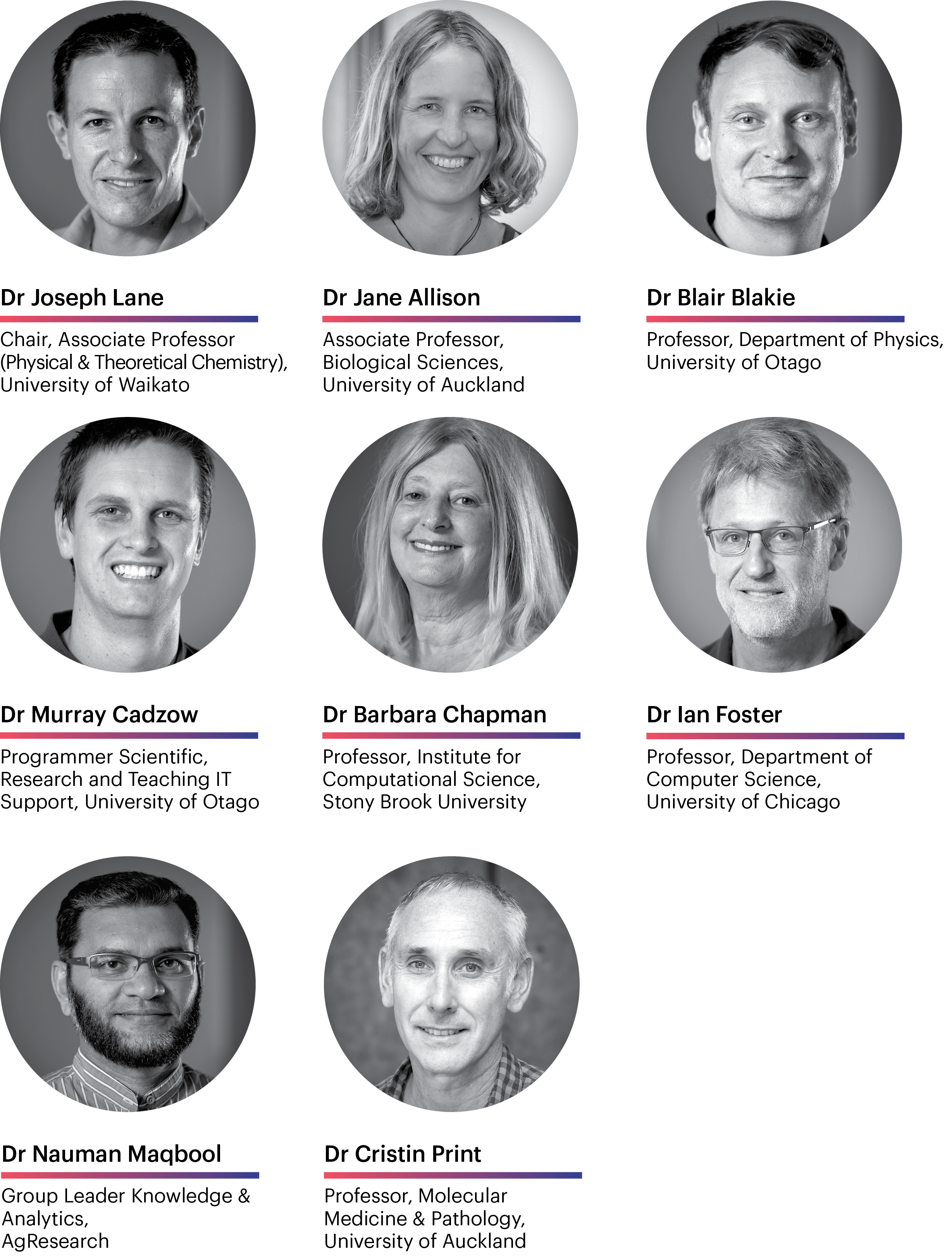 Photos of NeSI's Research Reference Group members