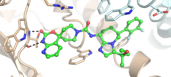 molecular modelling Public domain software for molecular modeling rasmol rasmol is a molecular  graphics program developed at the university of edinburgh the software is.
